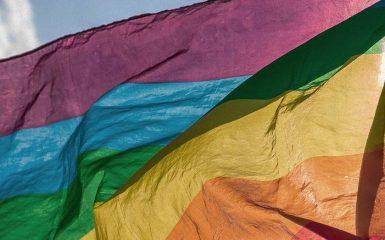 Webinário Casais Homoafetivos